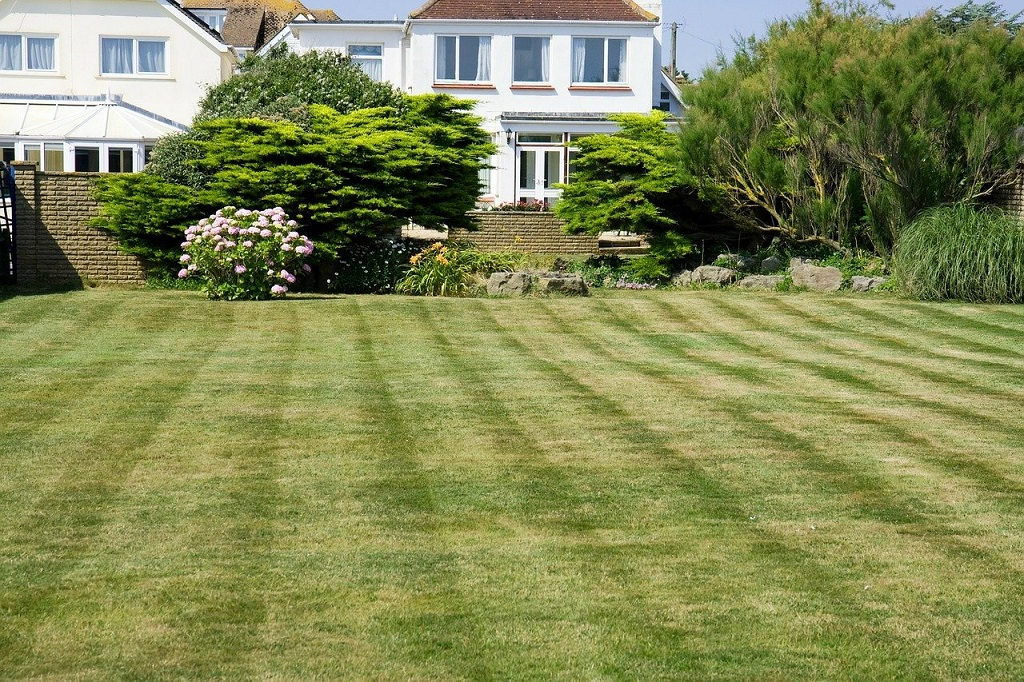 well manicured lawn with brownish spots throughout