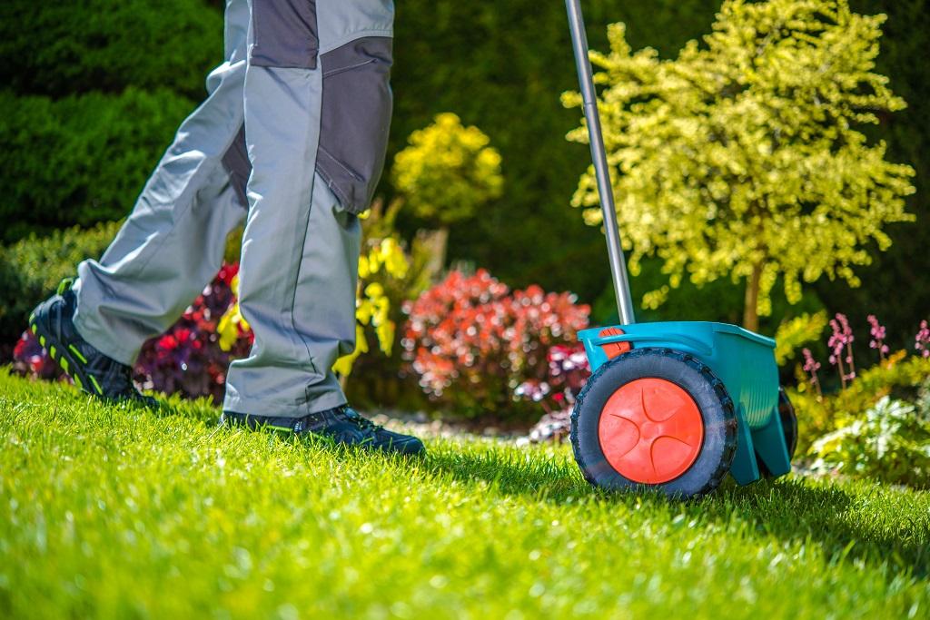 Man seeding lawn